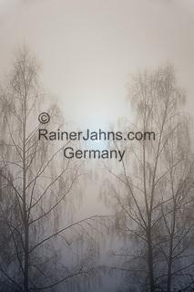 """Deutschland, Bayern, Chiemgau, Siegsdorf: """"Nebelsuppe"""" - mystische Stimmung   Germany, Bavaria, Chiemgau, Siegsdorf: foggy landscape - mystic scene"""