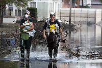 Hurricane Katrina Animal Rescue in New Orleans