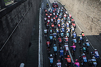 a neutralised peloton exiting the 'Konijnenpijp' ('Rabbit hole') to reach the other side of the Schelde river that cuts through Antwerp and moves towards Eastern Flanders<br /> <br /> 103rd Ronde van Vlaanderen 2019<br /> One day race from Antwerp to Oudenaarde (BEL/270km)<br /> <br /> ©kramon