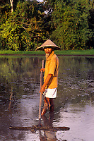 Old man doing traditional rice paddie farming with straw hat in flooded fields in Bali Indonesia