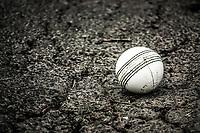 211023 Cricket - Men's Premier T20 Cup