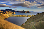Greville Harbour. D'Urville Island. Marlborough Region. New Zealand.