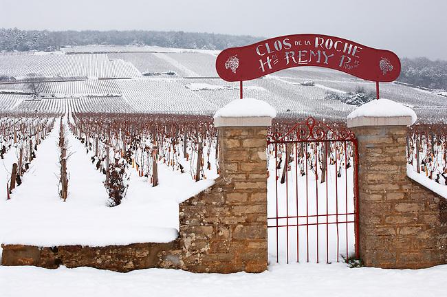 Latricieres vineyard gate in the snow. Chambertin Clos de Vin - Cote D'or, beaune, France.