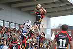 Dragons flanker Lewis Evans wins the line out ball.<br /> RaboPro 12<br /> Newport Gwent Dragons v Connacht<br /> Rodney Parade<br /> 23.03.14<br /> <br /> ©Steve Pope-SPORTINGWALES