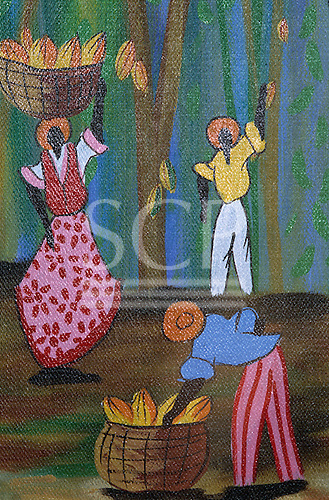 Sauipe, Bahia State, Brazil. Primitive style painting of people harvesting cocoa pods from the trees.