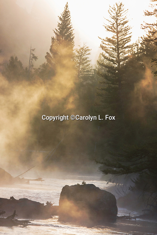 Steam rises from the Madison River in Yellowstone National Park.