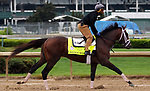 LOUISVILLE, KY -APR 25: Kentucky Derby hopeful Magnum Moon trains for the Kentucky Derby at Churchill Downs, Louisville, Kentucky. (Photo by Mary M. Meek/Eclipse Sportswire/Getty Images)
