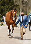 April 21, 2021: 37  Erroll Gobey and rider Bruce Davidson Jr. from the USA in the first horse veterinary inspection at the Land Rover Three Day Event at the Kentucky Horse Park in Lexington, KY on April 21, 2021.  Candice Chavez/ESW/CSM