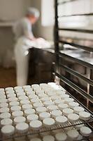 Europe/Europe/France/Midi-Pyrénées/46/Lot/Loubressac: Ferme Cazal-SARL Les Alpines - Production du Rocamadour AOC Fermier - les fromages frais moulés vont  partir sur des grilles pour l'affinage - Auto N°: 2010-103