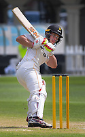 Fraser Colson bats during day three of the Plunket Shield match between the Wellington Firebirds and Auckland Aces at the Basin Reserve in Wellington, New Zealand on Monday, 16 November 2020. Photo: Dave Lintott / lintottphoto.co.nz