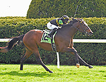 LEXINGTON, KY - APRIL 7: #12, Bound For Nowhere,  ridden by Julio Garcia, wins the G2 Shakertown at Keeneland Race Course on April 7, 2018 in Lexington, KY. (Photo by Jessica Morgan/Eclipse Sportswire/Getty Images)