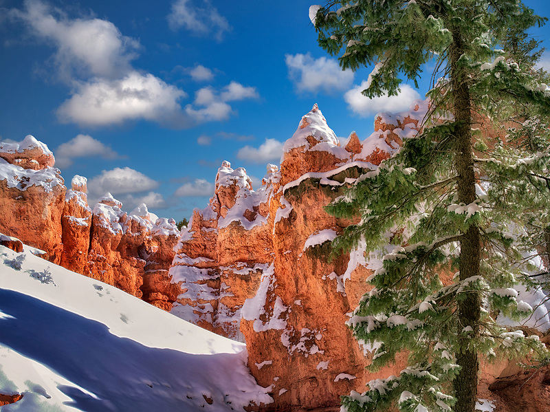 Snow in Bryce Canyon National Park, Utah