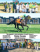 Tricky Escape winning The Robert Dick Memorial Stakes (grade 3) at Delaware Park on 7/7/18