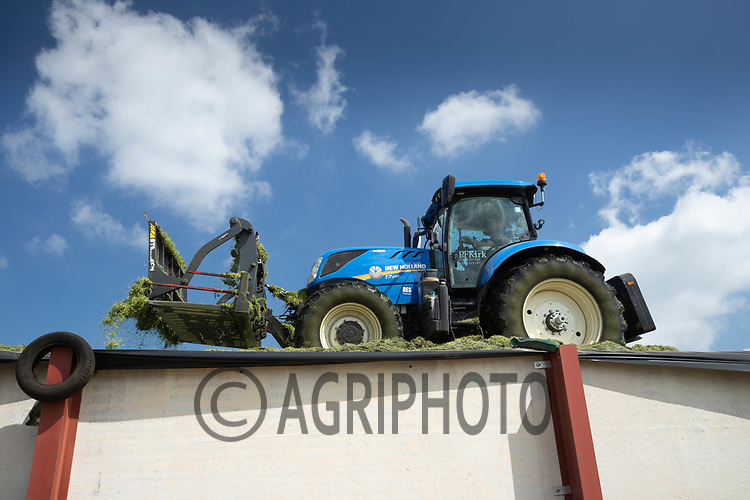 3-6-2021 Contractors clamping silage <br /> ©Tim Scrivener Photographer 07850 303986<br />      ....Covering Agriculture In The UK....