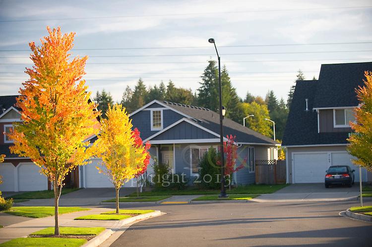 Neighborhood in Autumn