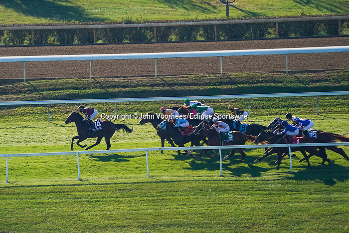 November 6, 2020: Horses race during the Juvenile Turf Sprint on Breeders' Cup Championship Friday at Keeneland on November 6, 2020: in Lexington, Kentucky. John Voorhees/Eclipse Sportswire/Breeders Cup/CSM