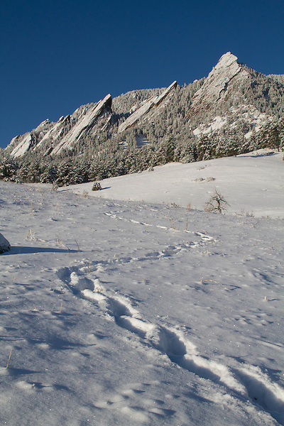 Snow at Chautauqua Park, Boulder, Colorado, USA