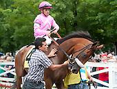 2013 SARATOGA HORSE INDEX - flat and jump