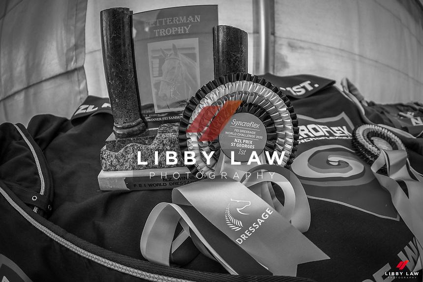 2020 NZL-Livamol FEI Dressage World Challenge. Solway Showgrounds, Masterton. Copyright Photo: Libby Law Photography