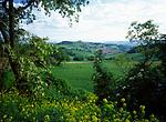 ITA, Italien, Marken, Landschaft im Parco Nazionale del Conero | ITA, Italy, Marche, landscape at Parco del Conero