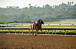 DEL MAR, CA  SEPTEMBER 4:  #7 Grace Adler, ridden by Flavien Prat, is all alone in in the stretch of the TVG Del Mar Debutante (Grade l) on September 5, 2021 at Del Mar Thoroughbred Club in Del Mar, CA.(Photo by Casey Phillips/Eclipse Sportswire/CSM)