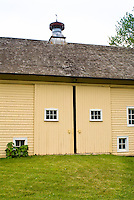 Pretty yellow painted barn with white windows, sliding doors, sky, green grass. Agricultural farming building . Board and batten door