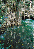 ile des pins, lac tataoume