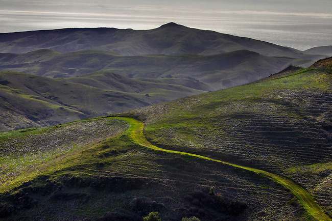 A grass-filled road leads through the green hills and valleys surrounding Moro Bay, California