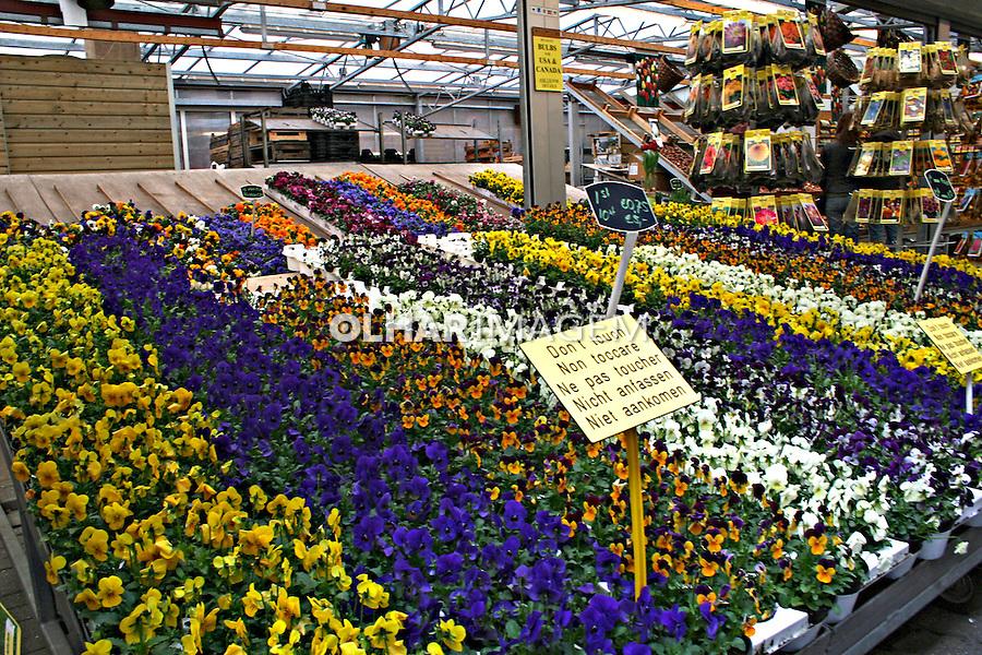 Mercado das flores. Amsterdã, Holanda. 2007. Foto:Marcio Nel Cimatti.