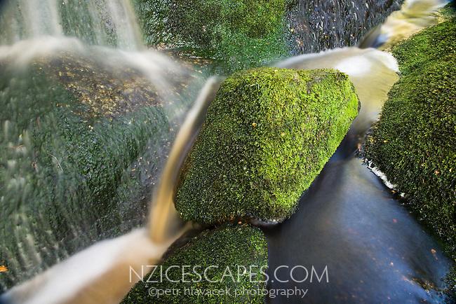Forest stream with rocks and moss in Oparara Valley near Karamea, Kahurangi National Park, Buller Region, West Coast, New Zealand, NZ