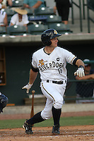 Charleston Riverdogs infielder Rob Lyerly #16 at bat during a game vs. the Rome Braves at Joseph P. Riley Jr. Ballpark in Charleston, South Carolina on June 6, 2010. Charleston defeated Rome by the score of 4-2.  Photo By Robert Gurganus/Four Seam Images