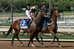 ARCADIA, CA. SEPTEMBER 30:  #3 La Force, ridden by Drayden Van Dyke,, in the post parade of the Zenyatta Stakes (Grade l) on September 30, 2018, at Santa Anita Park in Arcadia, CA.(Photo by Casey Phillips/Eclipse Sportswire/CSM)