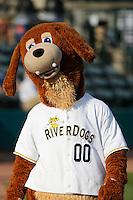 Charleston RiverDogs mascot Charlie T. Riverdog (00) before a game against the Hickory Crawdads at Joseph P. Riley Jr. Ballpark on May 2, 2015 in Charleston, South Carolina. Hickory defeated Charleston 4-1. (Robert Gurganus/Four Seam Images)