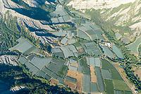 Apfelplantagen in der Provence: EUROPA,  FRANKREICH, ALPES MARITIMES 20.08.2020:Apfelplantagen in der Provence