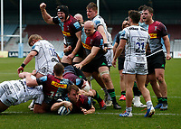 20th March 2021; Twickenham Stoop, London, England; English Premiership Rugby, Harlequins versus Gloucester; Harlequins, Gloucester; Alex Dombrandt of Harlequins scores and teammates ecstatic with efforts and result