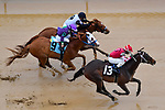 February 27, 2021: Scenes from an undercard race at Oaklawn Park on the Southwest Stakes undercard at Oaklawn Park in Hot Springs, Arkansas. Ted McClenning/Eclipse Sportswire/CSM
