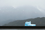 Iceberg, Grey Lake, Torres del Paine National Park, Patagonia, Chile