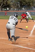 SAN ANTONIO, TX - MARCH 6, 2007: The St. John's University Red Storm vs. The University of Texas at San Antonio Roadrunners Softball at Roadrunner Field. (Photo by Jeff Huehn)