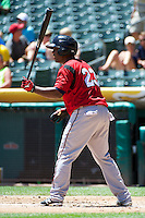 Robinzon Diaz (23) of the Nashville Sounds at bat against the Salt Lake Bees in Pacific Coast League action at Smith's Ballpark on June 22, 2014 in Salt Lake City, Utah.  (Stephen Smith/Four Seam Images)