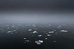 Bergy bits float in the Arctic Ocean, Svalbard, Norway
