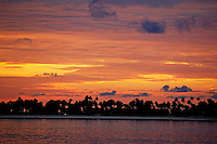Silhouetted palm lined beach against an impressive sunset, Maldives.