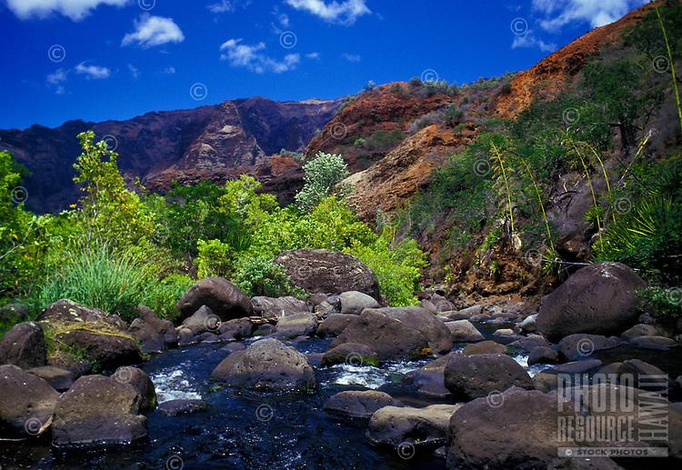Inside Waimea Canyon, gentle stream with rocks and folliage