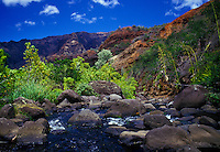 Inside Waimea Canyon, gentle stream with rocks and folliage