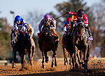 November 6, 2020: Vequist, ridden by Joel Rosario wins the the Breeders' Cup Juvenile Fillies at Keeneland Racetrack in Lexington, Kentucky on November 6, 2020. Alex Evers/Eclipse Sportswire/Breeders Cup