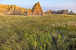 Badlands National Park, South Dakota:  Morning light on badland formations and grasslands