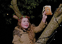 """Wassail Queen of Headless Cross, Holly Pound leaves an offering to the sacred robin.<br /> <br /> """"Here's to thee, old apple tree. Whence thou may bud, and whence thou may blow. And whence thou may bear apples enow. Hats-full, caps full, bushel, bushel sacks full. And all of our pockets full too, hurrah! And a little bit to keep under the stairs.""""<br /> <br /> <br /> <br /> 'The girls were interviewed privately at the beginning of the evening by a panel of judges consisting of the Mayor of Swale, Councillor Sue Gent, Councillor Ben Stokes and Asdaís community life champion Claire Fosbeary who is also a former town queen."""""""