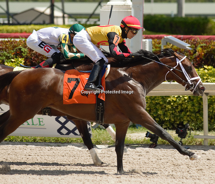 MARCH 27, 2021: #7 BASIN and Jose Ortiz push past rivals to win the $100,000 Sir Shackleton Stakes for Trainer Todd Pletcher and Jackpot Farm on Florida Derby Day at Gulfstream Park in Hallandale Beach, Florida on March 27, 2021. Carson Dennis/Eclipse Sportswire/CSM