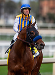FEB 09: Nadal with Joel Rosario wins the San Vicente Stakes at Santa Anita Park in Arcadia, California on Feb 09, 2020. Evers/Eclipse Sportswire/CSM