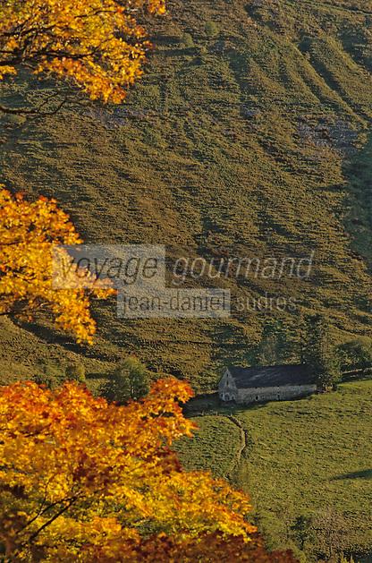 Europe/France/Auvergne/15/Cantal/Vallée de Dienne: Détail buron