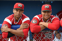 Batavia Muckdogs Kevin Grove (12) and Carlos Duran (30) in the dugout before a game against the Lowell Spinners on July 17, 2014 at Dwyer Stadium in Batavia, New York.  Batavia defeated Lowell 4-3.  (Mike Janes/Four Seam Images)